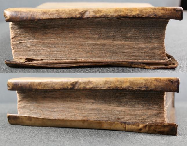 Trincir Buch
